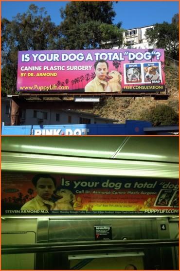 canine plastic surgery parody billboard-tile